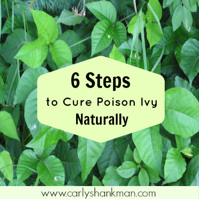 6 Steps to Treat Poison Ivy Naturally